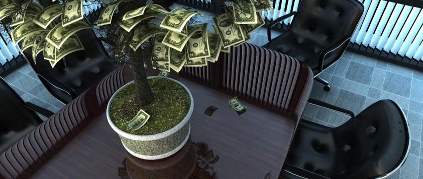 Corporate Venture Capital